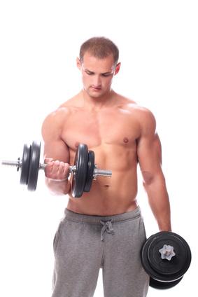 biceps2.jpg